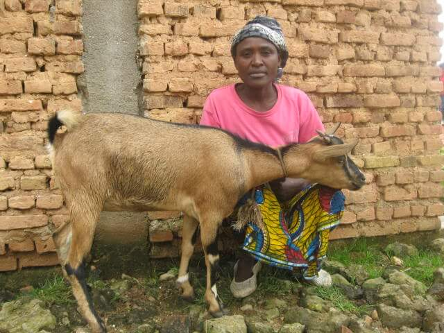 barayavuga visencia avec sa chèvre