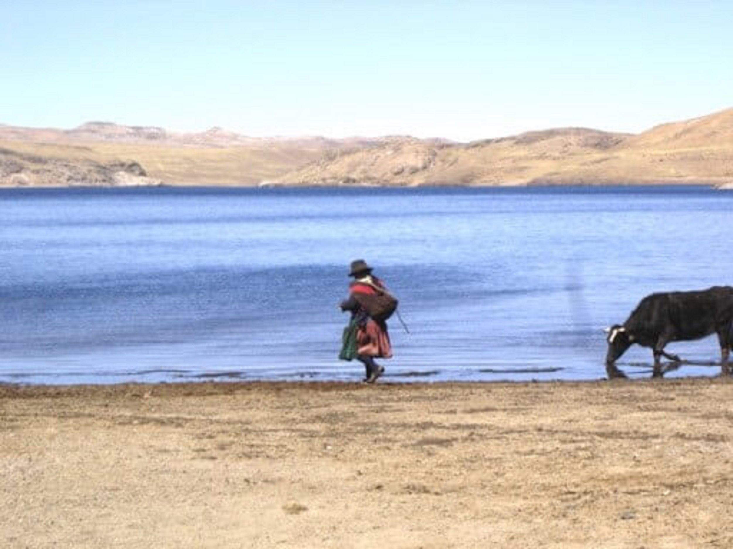solidaile lac pérou